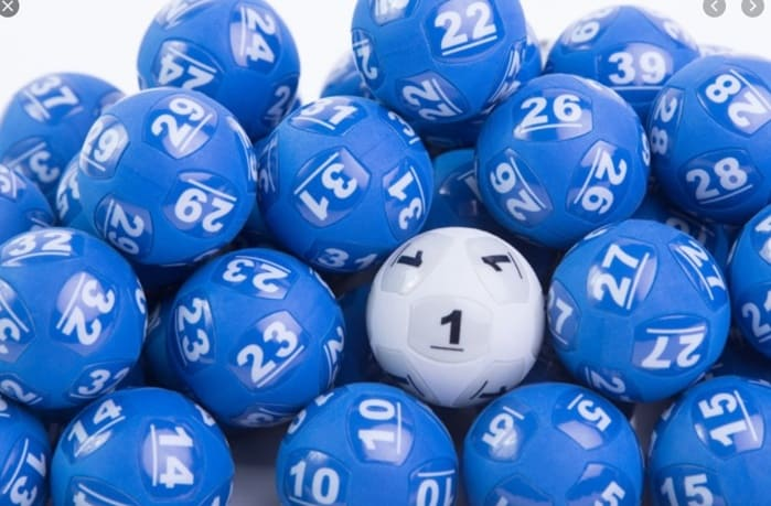 파워볼사이트 What the researchers say about the Powerball